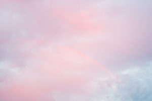 """""""The Sky is a Blue Gum Streaked with Rose"""" 2014"""