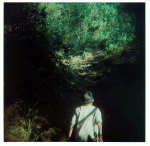"""""""Boy in Woods"""" 2010"""