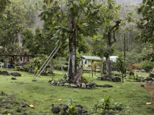 """""""Hanaiapa, Hiva Oa (4512938)"""" 2011"""