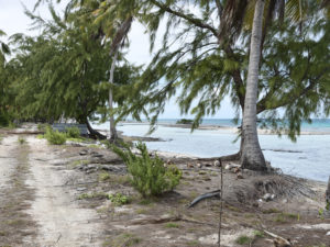 """""""Tikehau Atoll, Tuamotus"""" (4514207) 2011"""