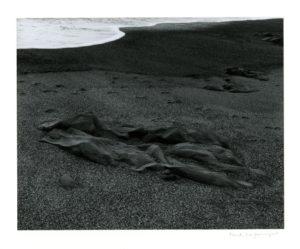 """Nahant Beach, Massachusetts, from Portfolio II"" 1958"