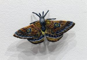"""Moth"" 2016"