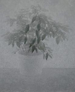 """Ficus #3"" 2009"
