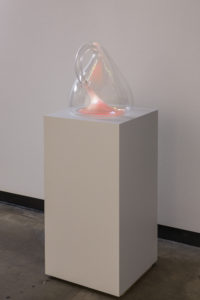 """Klein Bottle with the Image of Its Own Making (after Robert Morris)"" 2014"