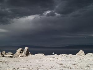 """Salton Sea, California"" 2008"