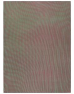 """""""MESH/MOIRE, 2012"""