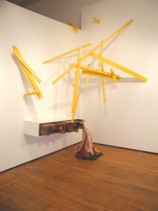 """Untitled (Raft)"" 2003-04"