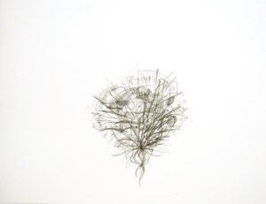 """Untitled"" 2007"