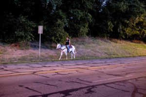 """Horse and Rider, Pleasant Valley Road, Austin, TX"" 2014"