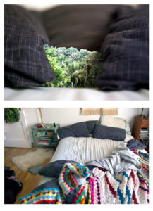 """""""Bedroom/Jungle Valley"""" 2007"""